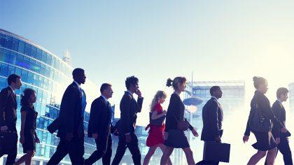 Bedrijf en organisatie