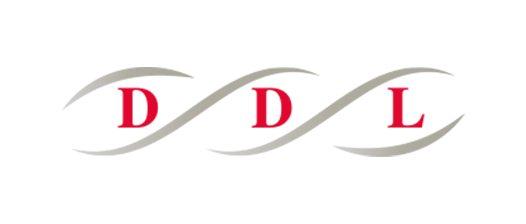 ddl-groep